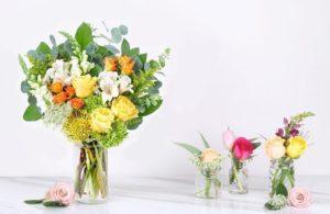 Modern Flower Arrangements at Budget-Friendly Prices