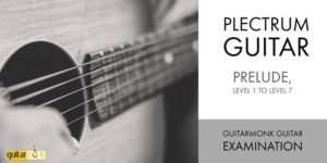 Be a Certified Guitarist