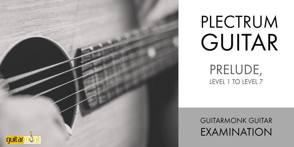 Be a Certified Guitarist